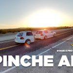 Stage 8 Pro Team Member Pinche Al